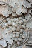 Granite grapes Royalty Free Stock Photo