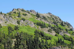 Granite and Green Hillside. Washington granite hillside covered with deep green trees and shrubbery against solid blue skies Stock Photos