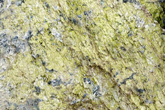 Granite green Royalty Free Stock Images
