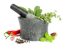 Granite mortar with fresh herbs Royalty Free Stock Photo
