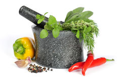 Granite mortar with fresh herbs Stock Image