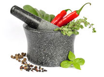 Granite mortar with fresh herbs Stock Photography
