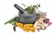 Mortar and Pestle, turmeric, rosemary, ginger, all spice, spice mortar, mint. Granite mortar and pestle allows for quickly crushing spices, herbs and more royalty free stock photo