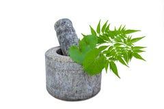 Granite Mortar and Pestle Stock Photos