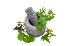 Granite Mortar and Pestle Stock Images