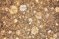 Granite. Natural background close up royalty free stock image