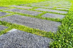 Granite path in the garden. On a summer day Royalty Free Stock Images