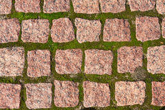 Granite pavers with grass Stock Photo