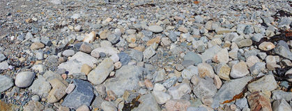 Granite pebbles form the beach. At the Seawall  Maine,Mount Desert Island, Acadia National Park Royalty Free Stock Images