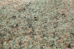 Granite Rock with Lichen Stock Images