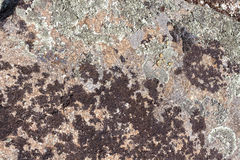 Granite rock with moss background. Background of stone surface. Textured processing hard stone. Stock Photos