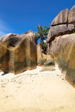 Granite rocks and palms on island La Digue in Seychelles Stock Photo