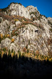 Granite rocky wall Valtellina Italy Royalty Free Stock Images