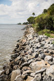 Granite Seawall and Palm Trees on Coast Stock Image