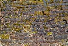 Granite slab surface Stock Images