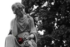 Granite statue of woman holding a red rose at gravesite. Black and White Granite statue of woman holding a colored red rose at gravesite Royalty Free Stock Photos