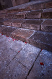 Granite steps with rose petals Stock Image