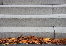 Granite stone stair with dead leaves in autumn Royalty Free Stock Photo