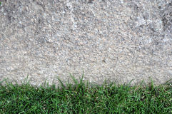 Granite stone wall with grass foreground. Royalty Free Stock Image
