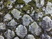 Granite stone wall with green moss stock photo