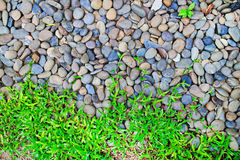 Through granite stones boulders the green grass simply grows. Fo Royalty Free Stock Images