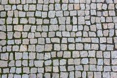 Granite stones. Square granite stones on the pavement Stock Photos