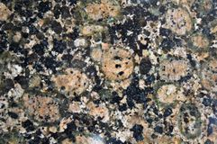 Granite texture available as background. Mottled, architecture. Close up of polished granite available as background. Mottled, architecture royalty free stock images