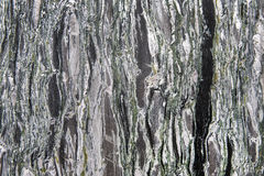 Granite texture - marble layers design green and gray stone slab Royalty Free Stock Photos