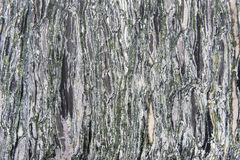 Granite texture - marble layers design green and gray stone slab Royalty Free Stock Photo