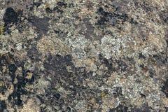 Granite texture stones rock royalty free stock image