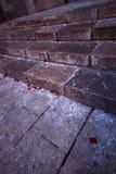 Granitjobsteps mit den rosafarbenen Blumenblättern stockbild