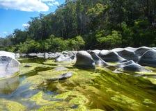 Granito e algas no rio Fotografia de Stock