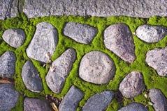 Granitowi brukowowie i mech Fotografia Stock