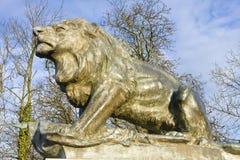 granitowy lew Obraz Stock