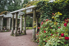 Granitterrass i Catherine Park 1063 Arkivfoto