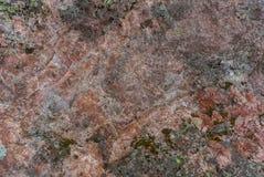 Granittextur som är röd med mossa Royaltyfria Bilder