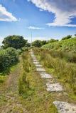 Granittjock skivaBodmin hed Cornwall UK royaltyfria foton