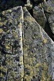 Granitu kamień przerastający z żółtym mech obraz stock