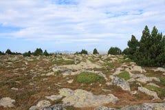 Granitu kamień w Pyrenees orientales Zdjęcia Stock
