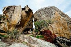 Granitu ogród Zdjęcia Royalty Free
