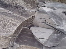 granitu rock Kamienny tekstury zbliżenia tło Szorstki Kamienny tekstury tło Obrazy Royalty Free