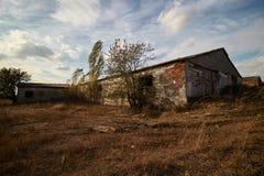 Granja abandonada afuera, crecido demasiado con la hierba, otoño temprano Imágenes de archivo libres de regalías