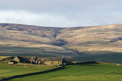 Granja alejada de Northumbrian Imagen de archivo libre de regalías