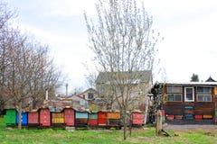 granja checa de la abeja Fotografía de archivo libre de regalías