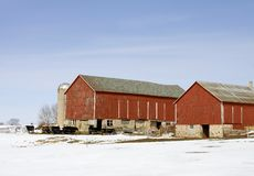 Granja de ganado en el invierno Foto de archivo