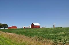 Granja de Illinois con el granero rojo Imagen de archivo libre de regalías
