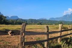 Granja de la cerca en Laos Imagen de archivo libre de regalías