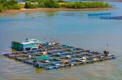 Granja de la cría de los pescados en el Vietnam meridional Foto de archivo libre de regalías