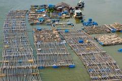 Granja de la cría de los pescados en Vietnam meridional Foto de archivo libre de regalías