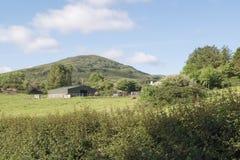 Granja de la montaña Foto de archivo